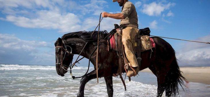 Geschikte paardenkleding vinden, waar moet je op letten?